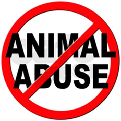 Essay Animal Cruelty - 999 Words Cram